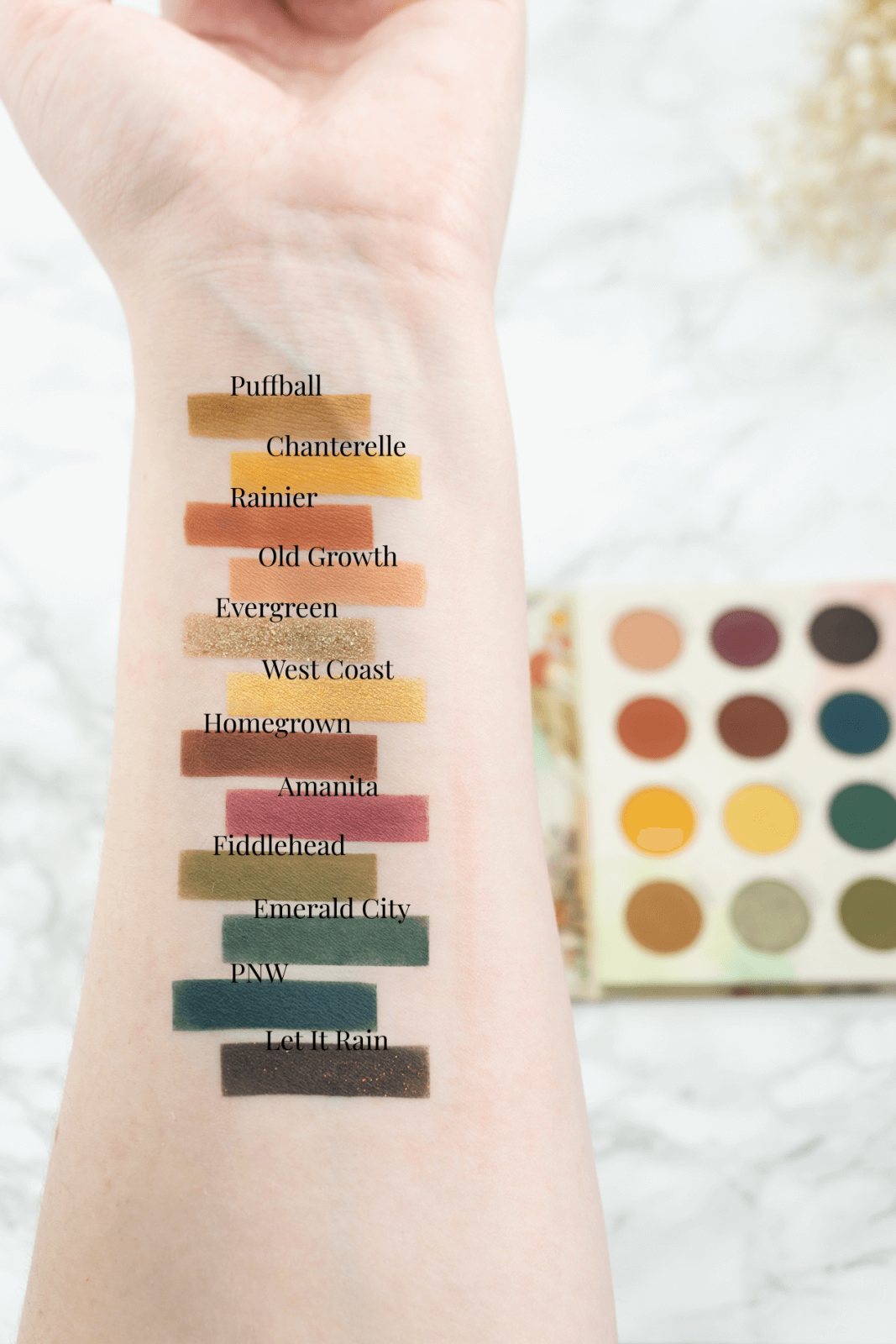Authentic Forest Vibes With The RawBeautyKristi x Colourpop Collection ⋆ Beautymone